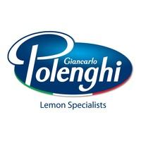 LOGO POLENGHI ENGL_HD-001.jpg