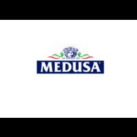 logo Medusa.def tr.pdf