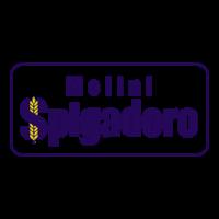 logo_spigadoro.png