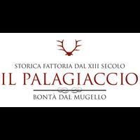 Logo Palagiacciopalco VETTORIALE.jpg