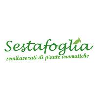 Logo Sestafoglia HD.jpg