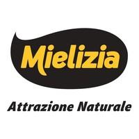 Mielizia pay off - Copia.jpg