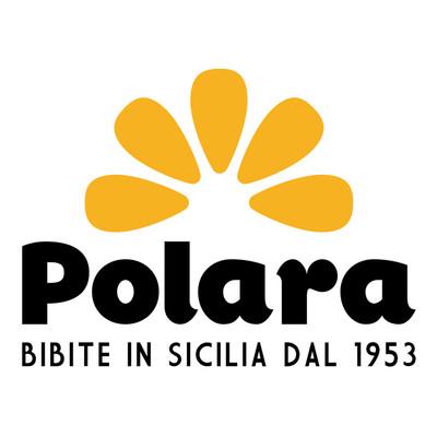 Polara-Logo-2017-rgb.jpg
