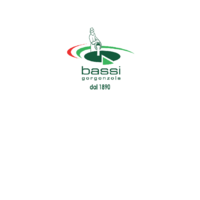 Logo nuovo Bassi PNG.png