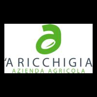 aricchigia_logo-01 png.png